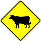 "W11-4S  Cattle Crossing Symbol  24"" x 24"" Engineer Grade Aluminum Sign"